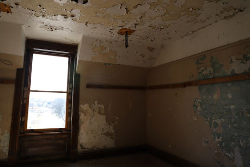 4 Things You Can Do If You've Had Mold Exposure