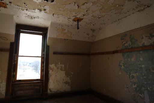 mold exposure